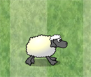 Hra online - Sheep Dash